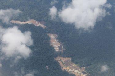 Forêt tropicale et exploitation aurifère