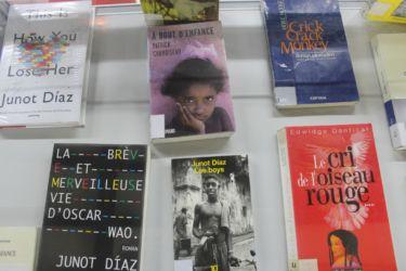 Enfance et littérature caribéenne (Medium)
