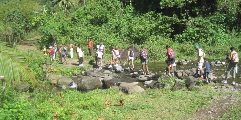 Vallée de la Grande Rivière, lieu magique de la Guadeloupe