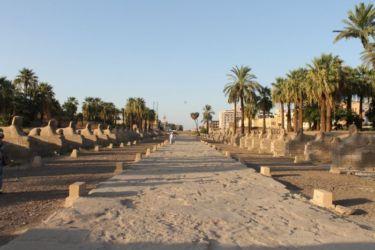 Allée de sphinx qui reliait Louxor et Karnak