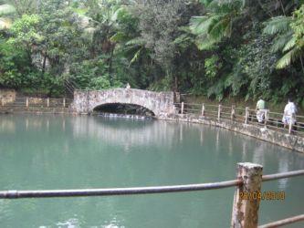 Bassin dans la forêt d'El Yunque