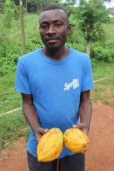 Le cacao, richesse du Ghana