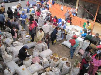 Marché aux pommes de terre à Riobamba