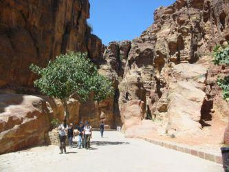 Pétra, le canyon du Sig