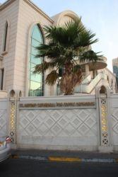 Eglise copte-orthodoxe St Antoine, Abu Dhabi