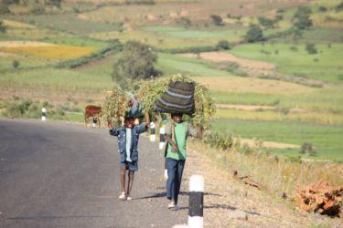 La campgane autour de Gondar