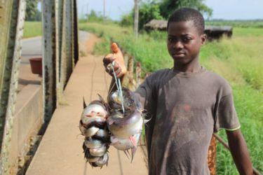 Pêche dans l'Agnéby