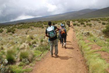13-De Mandara à Horombo