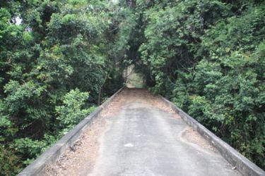 Pont sur le fleuve Iringou