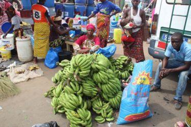 Vendeuse de banane-plantain à Abengourou