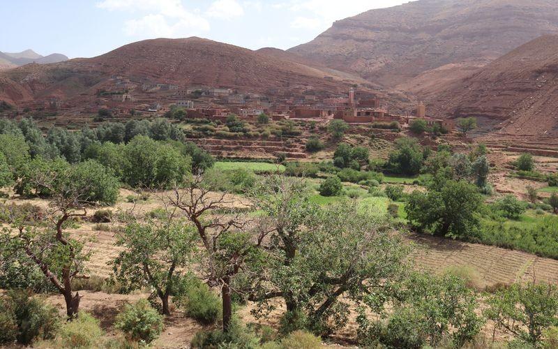 Ouarzazate, porte du désert