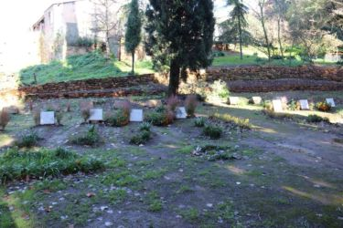 Tombes des 7 moines martyrs de Thibérine